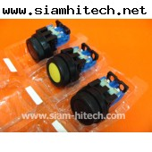 COMMAND SWITCH AR30F0R (FE) 250v (ของใหม่)